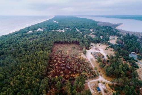 widok z góry na obszar wyciętego lasu przy morzu w okolicach Łeby